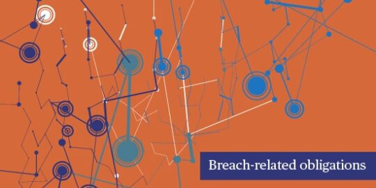 Big Data & Issues & Opportunities: Breach-related obligations