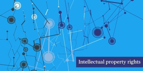 Big Data & Issues & Opportunities: Intellectual Property Rights